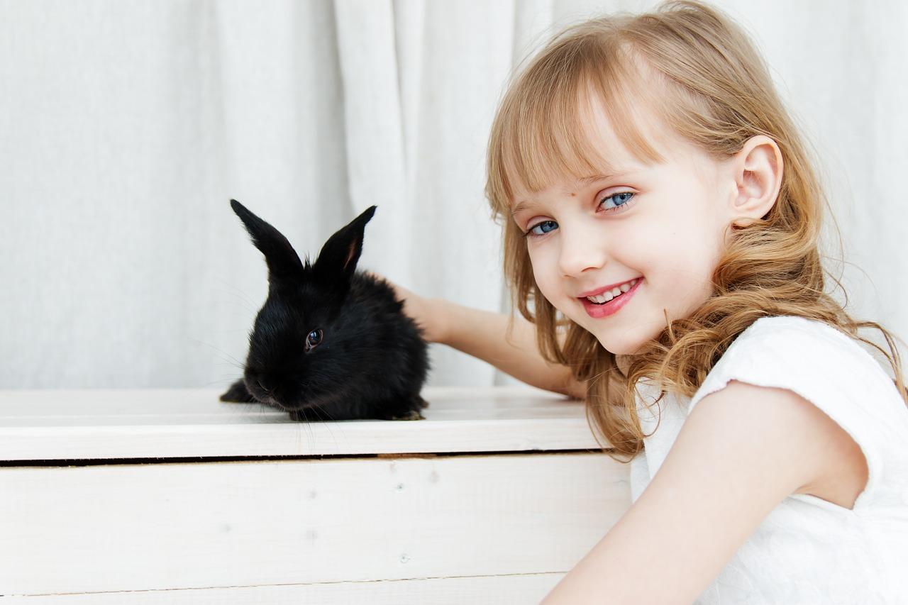 Rendre votre lapin heureux